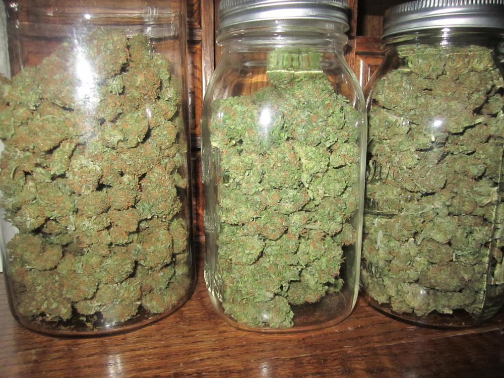 La conservación y el curado de la marihuana es clave para disfrutar de los sabores de la cosecha