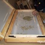 Extracción de hachís con nitrógeno líquido. Foto 15