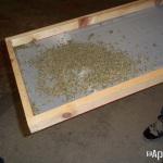Extracción de hachís con nitrógeno líquido. Foto 28