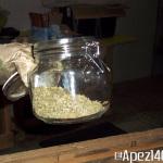 Extracción de hachís con nitrógeno líquido. Foto 29