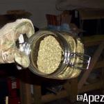 Extracción de hachís con nitrógeno líquido. Foto 30