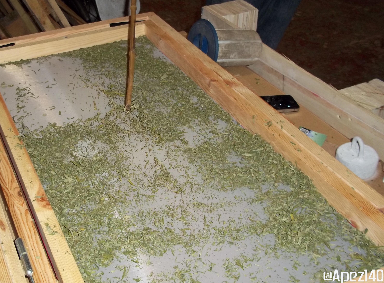 Manicurado extracción de hachís. Foto 7