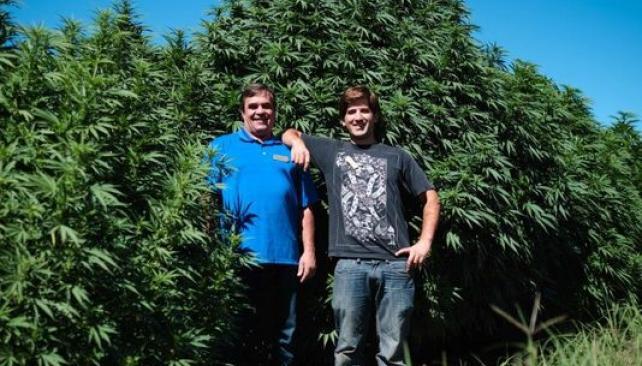Subasta de cannabis en EE.UU