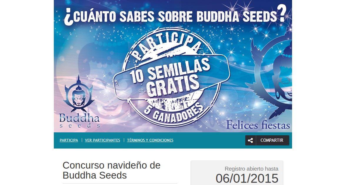 Concurso de Buddha Seeds
