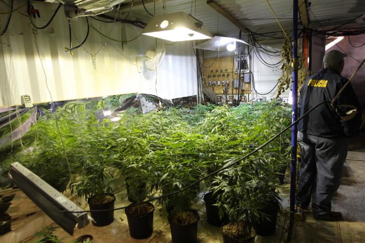 Cultivo de cannabis bajo tierra