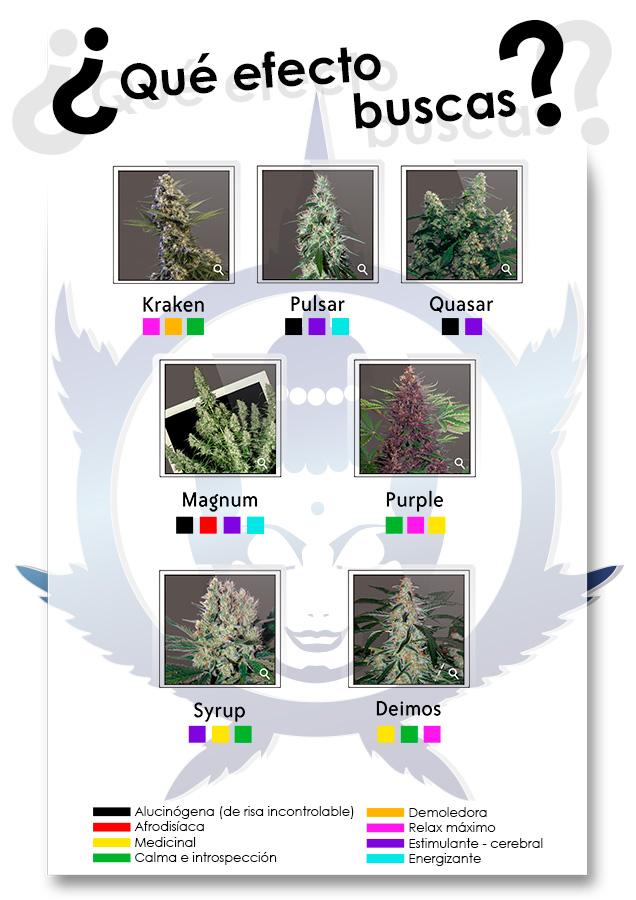¿Qué efecto buscas con nuestras variedades?