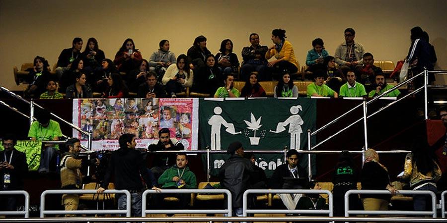 Representantes del sector cannábico en la Cámara de Diputados