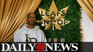 Snoop Dog: Leafs by Snoop