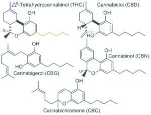 Estructura molecular del THC, CBD, CBG, CBN y CBC