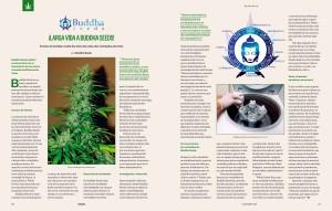Reportaje 10 aniversario Buddha Seeds