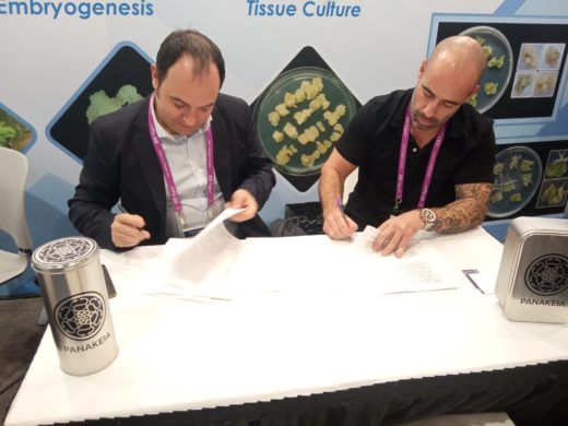 Hemp Trading CEO, Ernesto Llosá signed the agreement with two American companies at MJBizCon Las Vegas