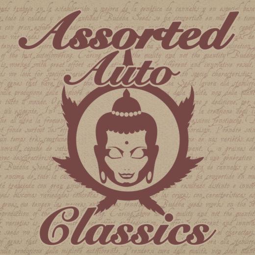 Assorted Classics Auto