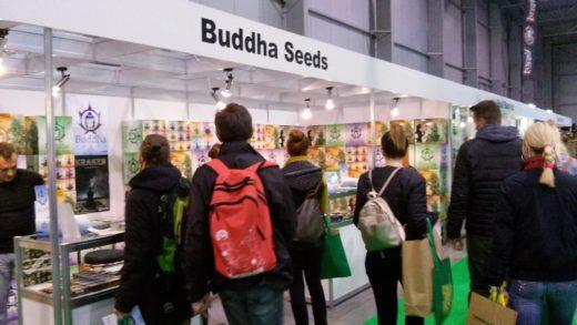 buddha to buddha outlet store