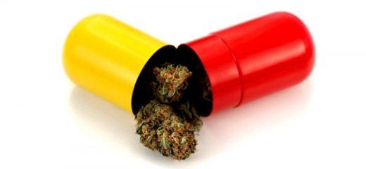 Berlín legalizará la venta de cannabis